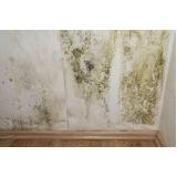onde fazer impermeabilização parede mofo Campo bom